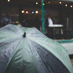 rain rain   l   2016